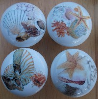 Cabinet knobs seashell images